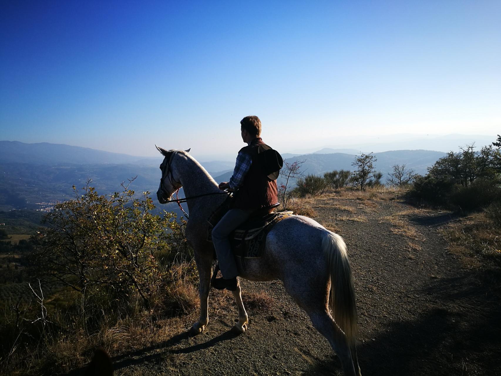 Passeggiate a cavallo e lezioni di equitazione